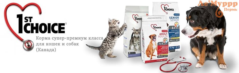 Купить корм фестчойс 1st Choice в Перми