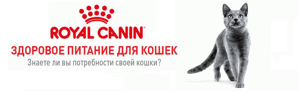 Купить корм Royal Canin в Перми